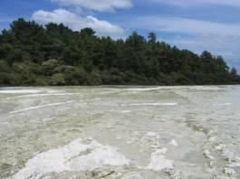 גבישי טוף צורני ב Wai-O-Tapu