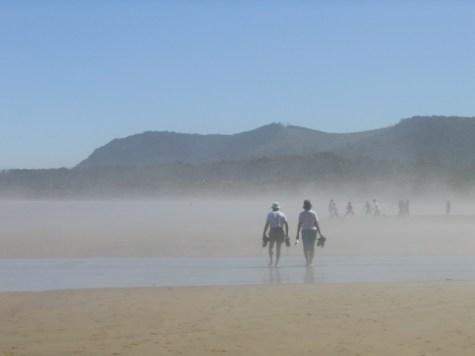 חוף Waipati