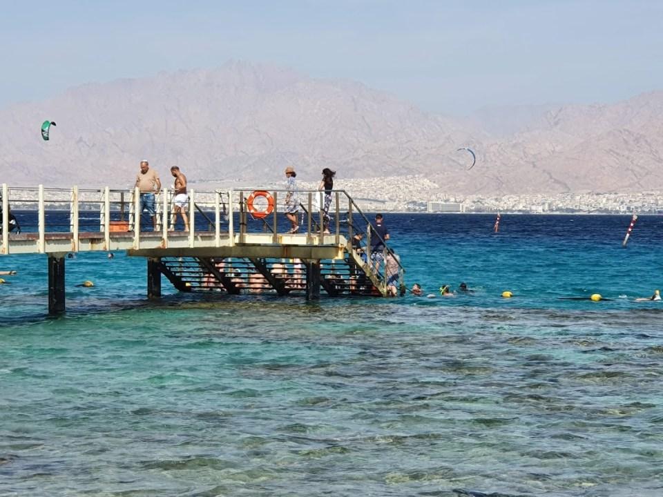 שנירקול בשמורת חוף אלמוג