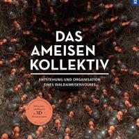 Das Ameisenkollektiv. Entstehung und Organisation eines Volkes der Roten Waldameise von Armin Schieb