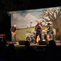 Randall Bramblett Concert - Aug 2015