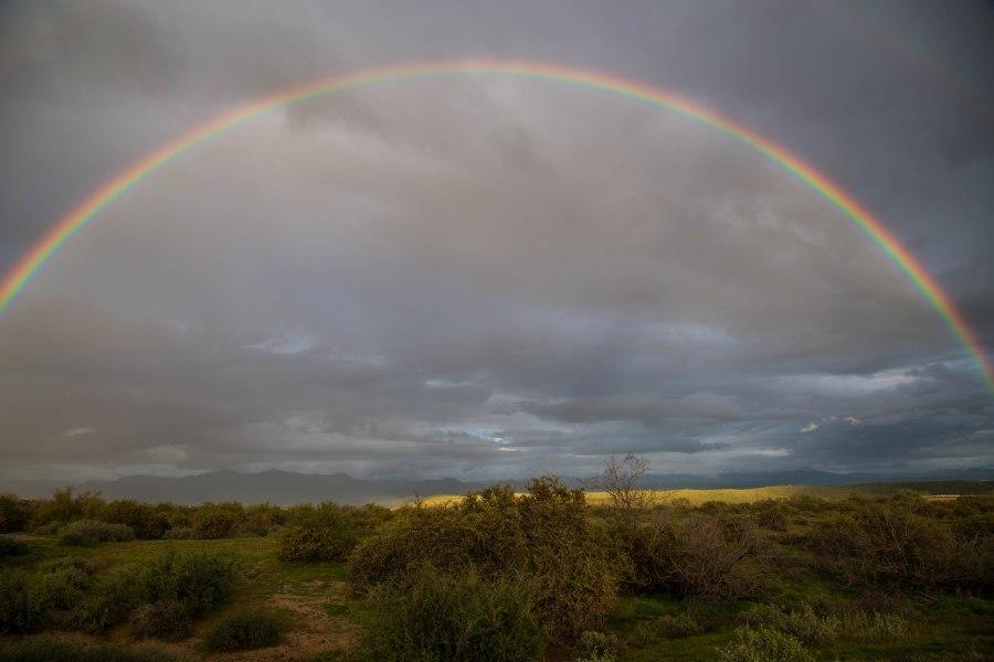Rainbow3-IMG_6858.jpg