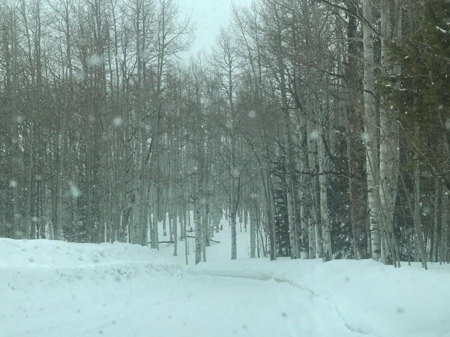 Road-03.jpg