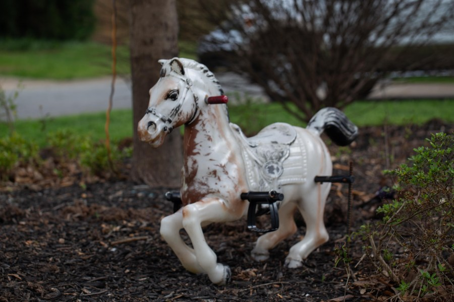 Horse-01.jpg