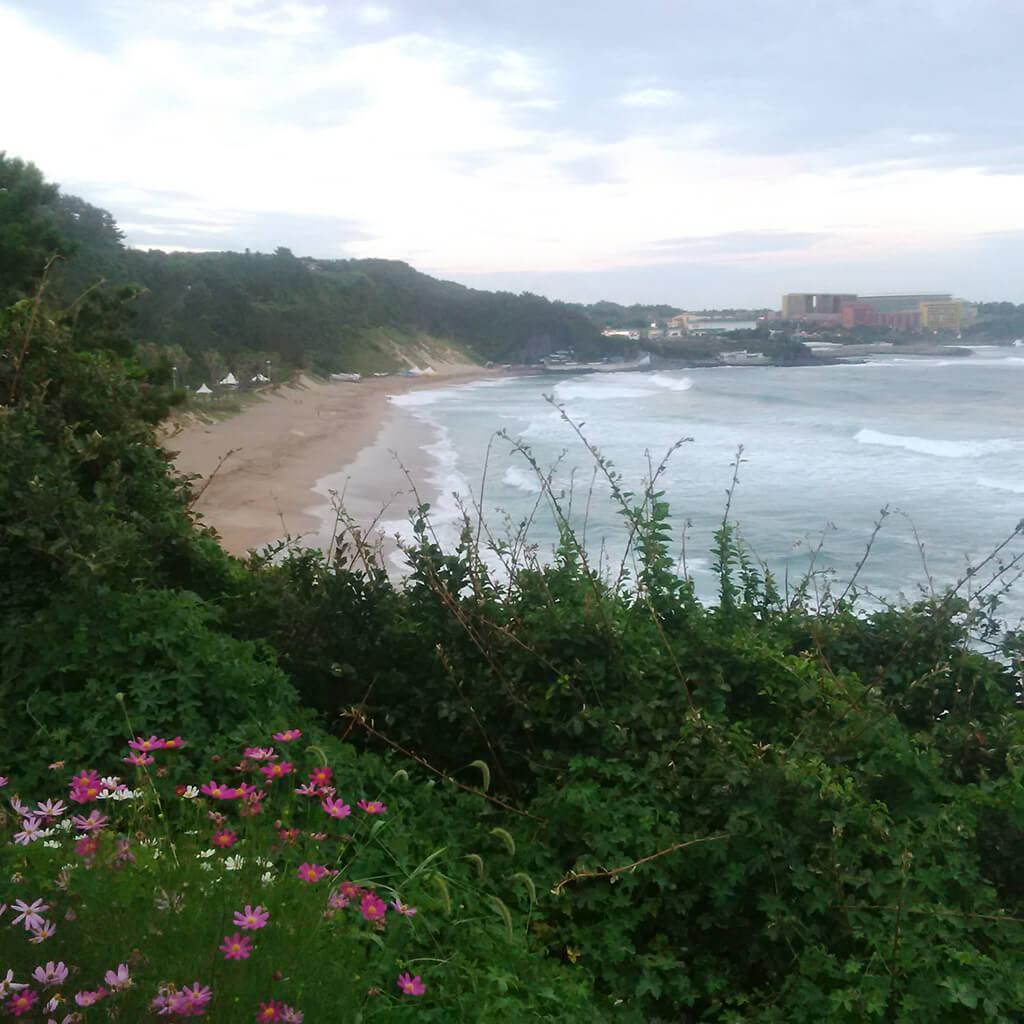 Jeju Island Hyatt Resort Ocean Views