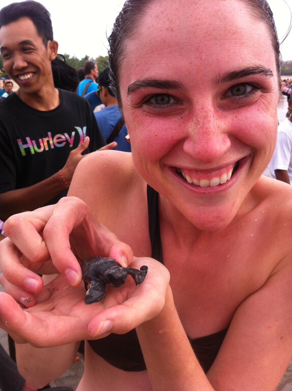 Bali Baby Turtles!