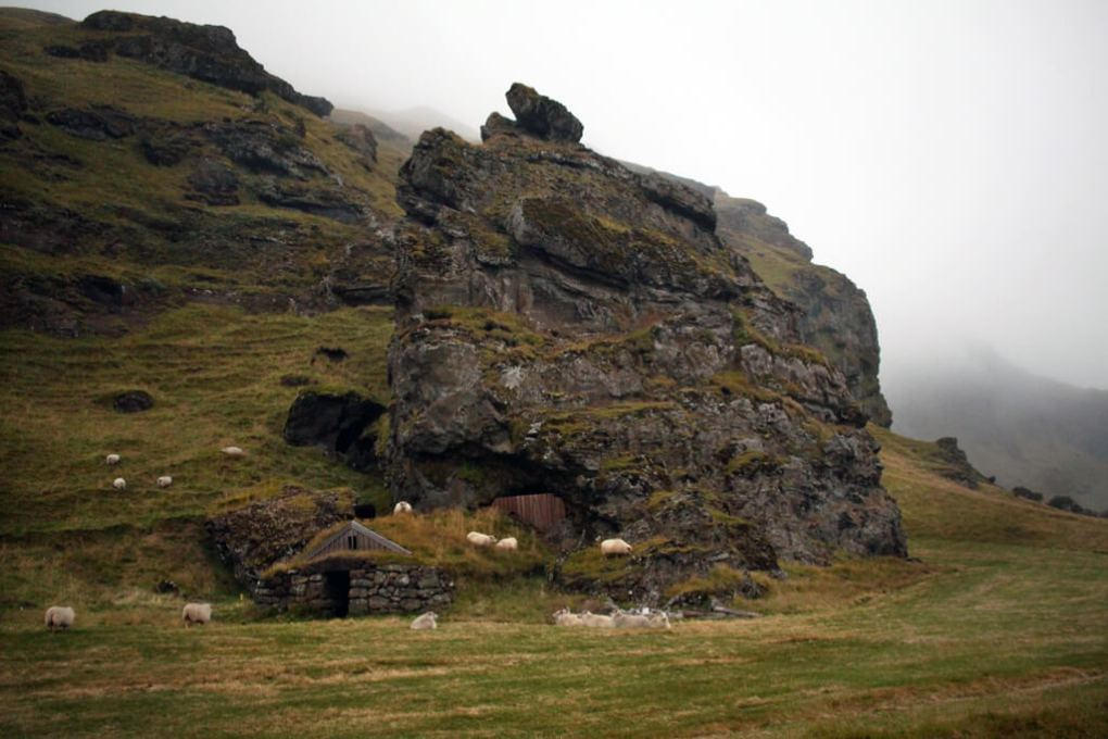 Iceland Rock Face & Sheep