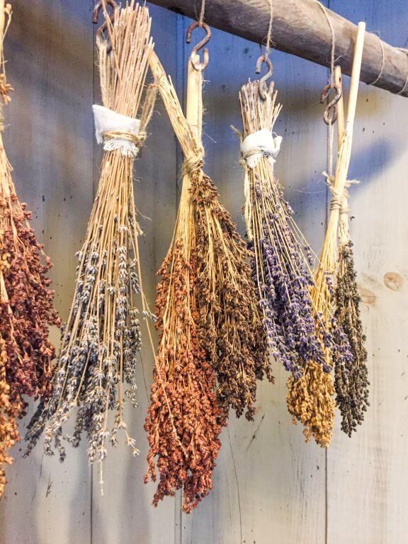 Norfolk County's Bonnie Heath Estates Lavender Stalks