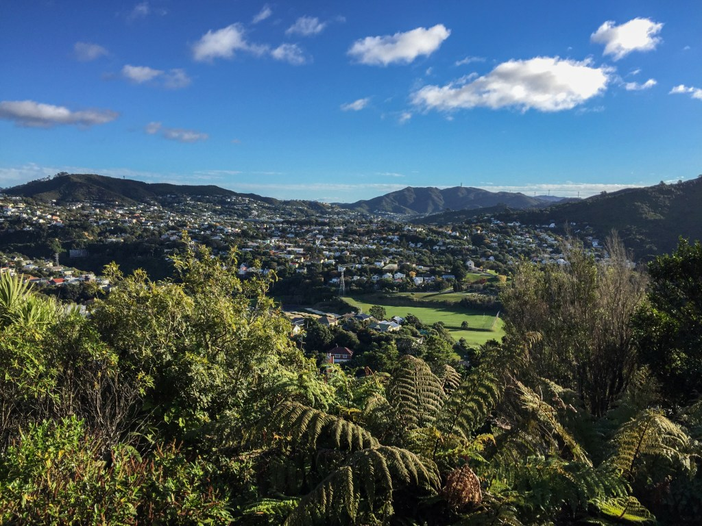 Make Your Own Path in New Zealand Using Budgets to Improve Your