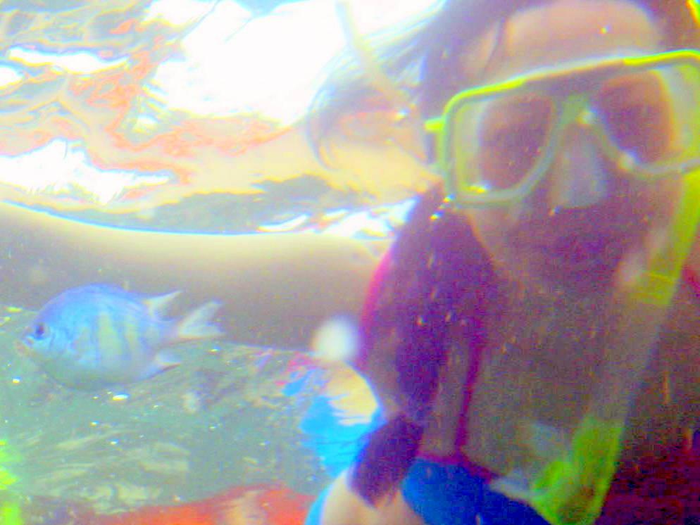 Isla Pandan Snorkeling (2/6)