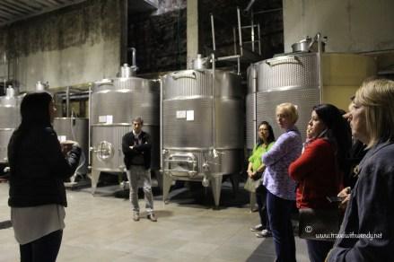 TWW - Veronica wine tour
