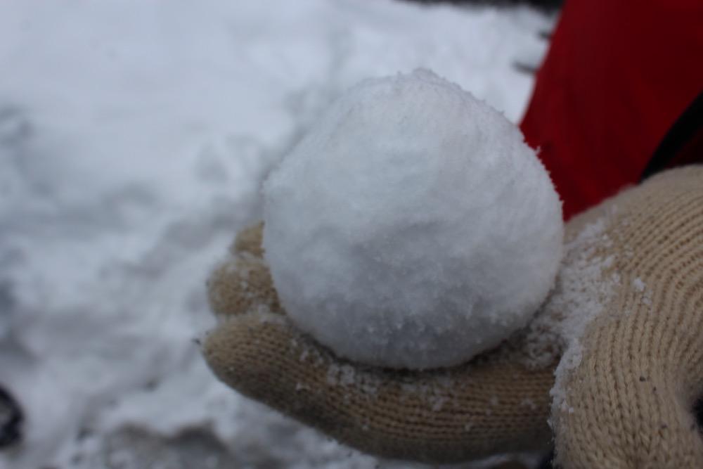 snowballs-baiersbronn