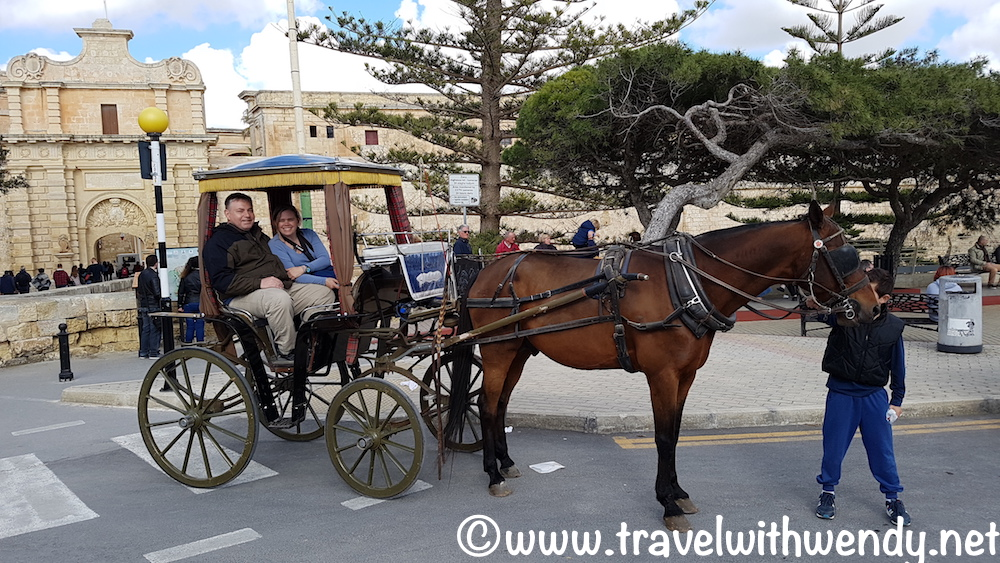 horse-and-buggy-booo-dont-do-it