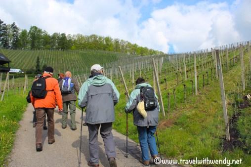 Wine walk Kappelrodeck