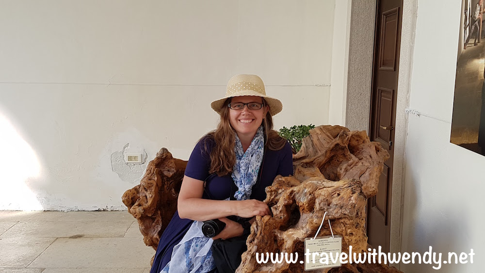 500 year old olive tree stump