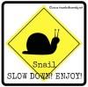 ©TWW - snail