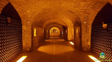 Caves of Winery - longest wine caves in the world