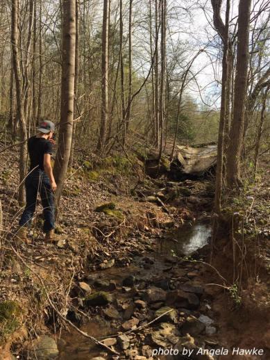Hikes everywhere