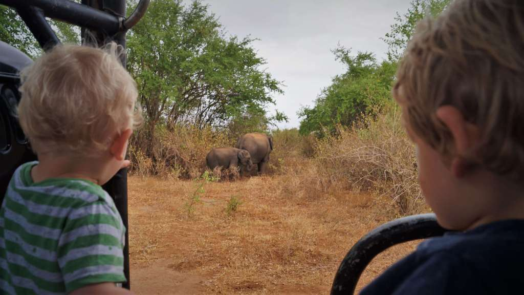 Udawalawe NP with young kids: meeting elephants in the Sri Lankan wilderness