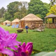boy running by yurts. Pink flowers in foreground.
