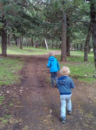 two boy waling in forest