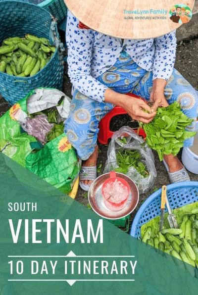 South Vietnam itinerary pin
