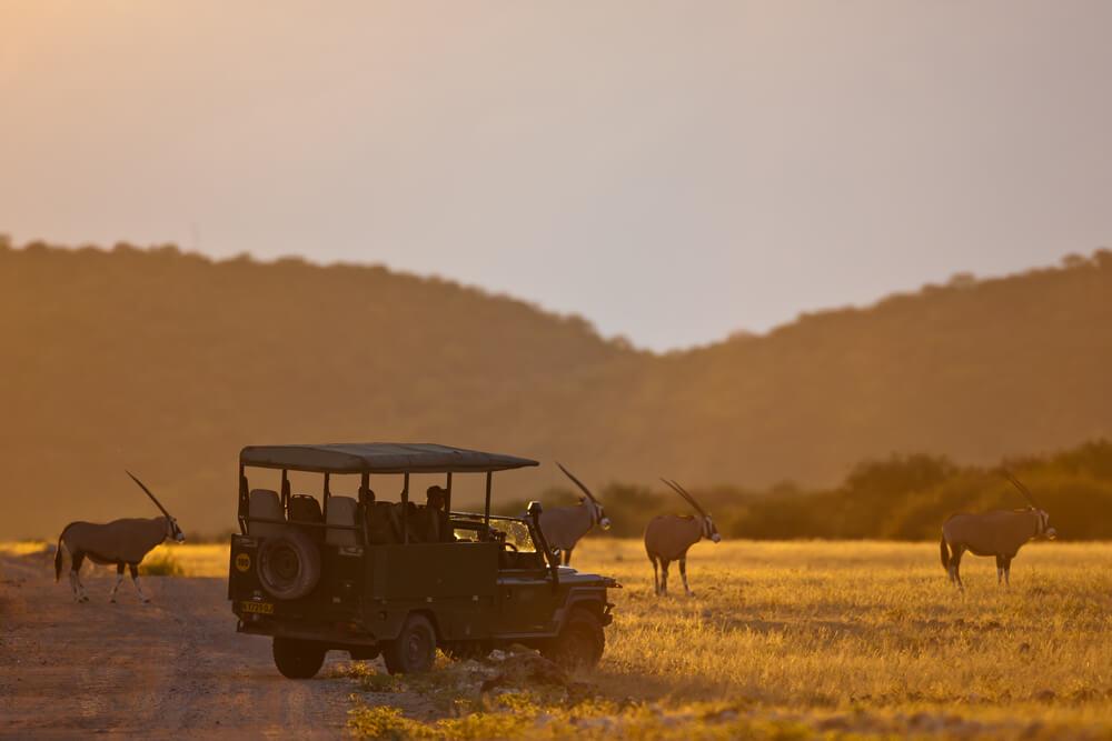 The BEST Malaria free safaris in Africa