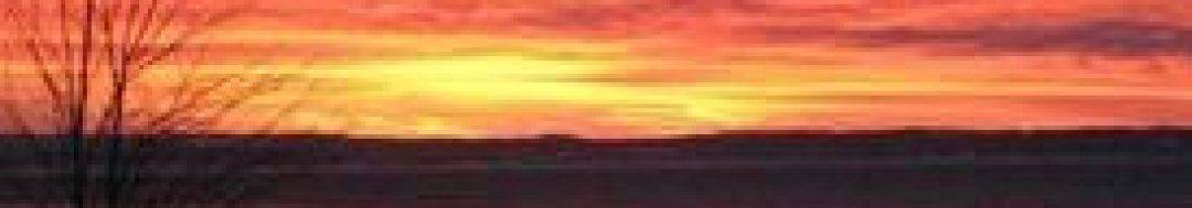 cropped-cropped-cropped-184834_945759867698_3363543_n.jpg