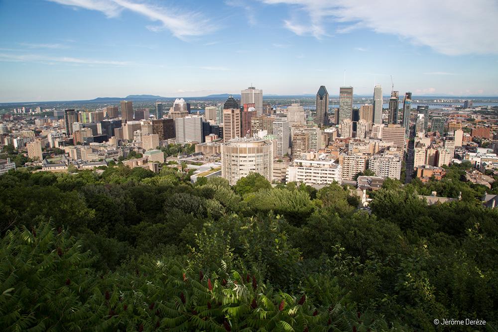 Vue sur Montréal depuis le Mont-Royal