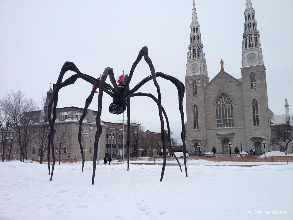 Araignée de Louise Bourgeois - Musée des Beaux-Arts d'Ottawa