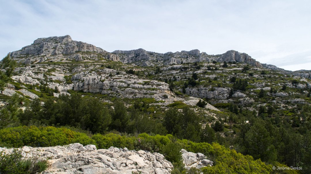 Voyager-calanques-marseille-13