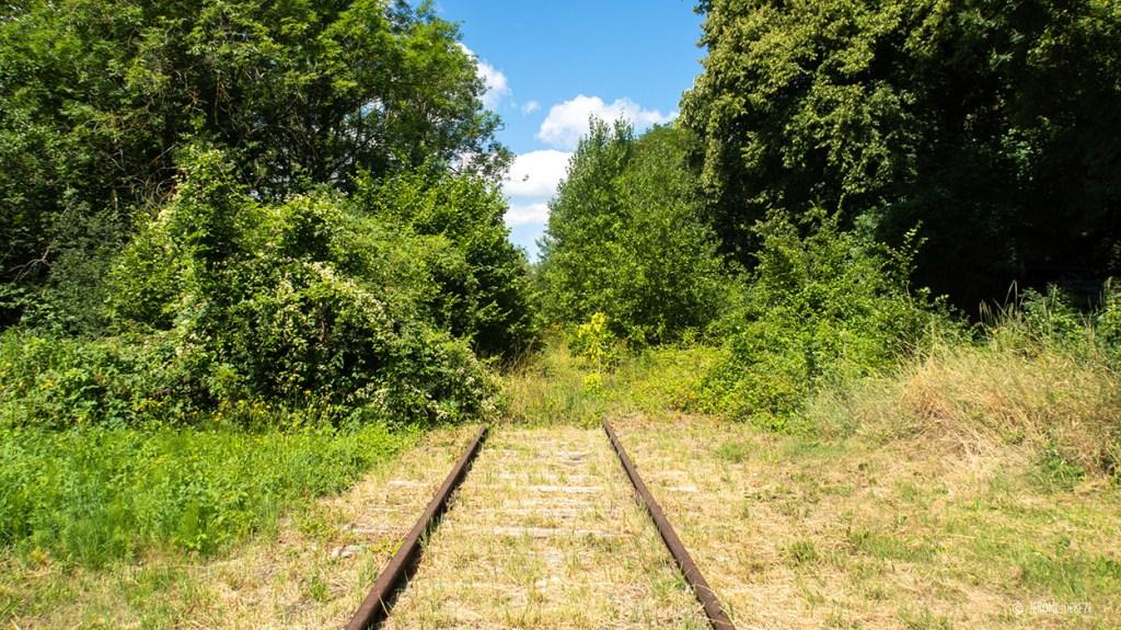 Rail abandonné en Meurthe-et-Moselle