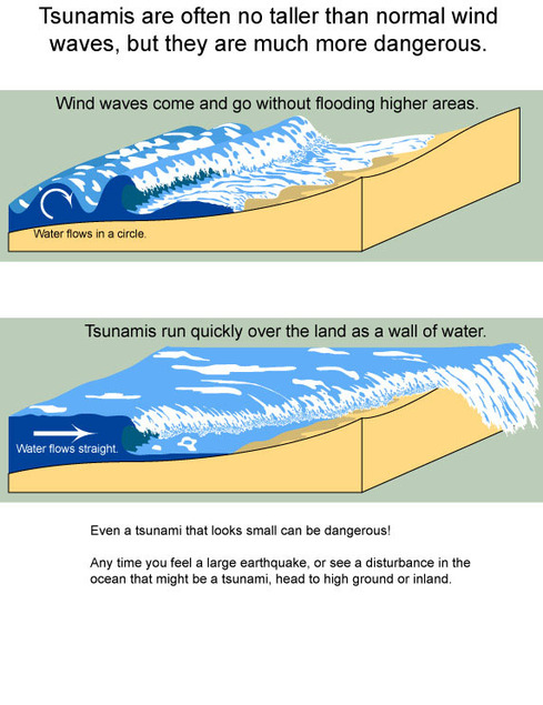 tsunami diagram with labels pioneer bluetooth car stereo wiring formation the physics of tsunamis how is a formed