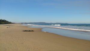 View of Neck Beach