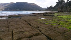 Eaglehawk Neck and the Tessellated Pavement