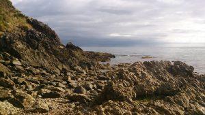 Bass Strait