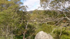 Views from Lime Hill Lookout