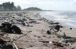 El problema del plástico en el medio ambiente / Foto: Nils Ally (CC-BY-3.0)