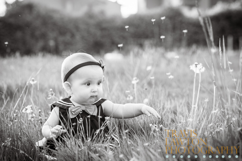 Black And White Image Of Baby Playing With The Dandelions In A Field