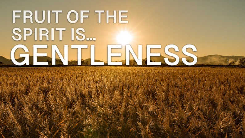 The Fruit of the Spirit Is… Gentleness