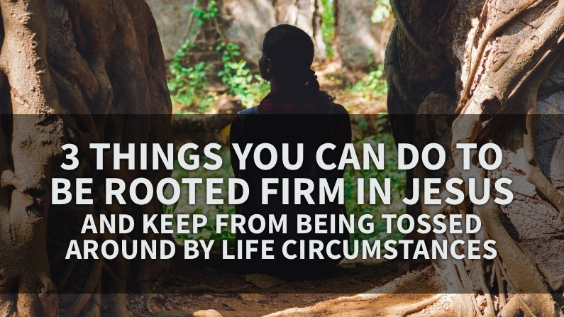 3 Things You Can Do To Be Rooted Firm In Jesus (And Keep From Being Tossed Around By Life Circumstances)