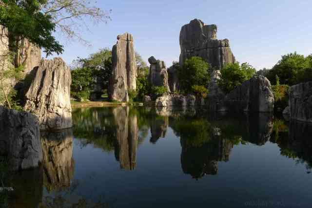 stone forest 750x500 - Tempat-tempat Unik Ini Membuat Kalian Berpikir Keras