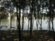 Wetland6-e1350634038620