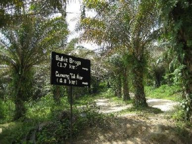 A signboard at the base of the hill.
