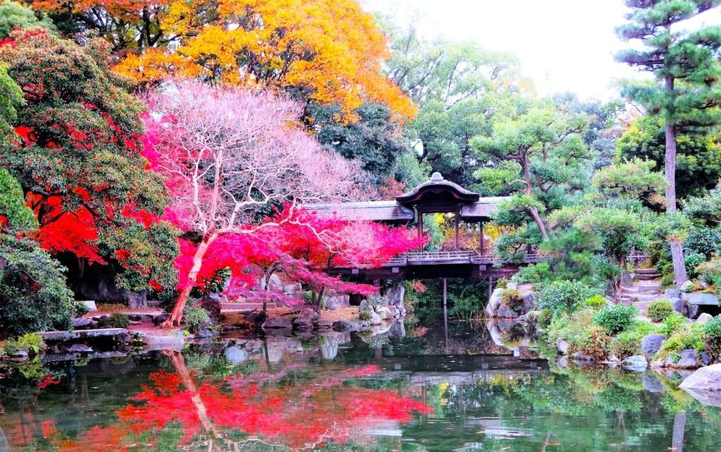 大阪到關西城市交通, 【大阪交通】大阪到關西各城市交通全攻略(京都、奈良、神戶、姬路)