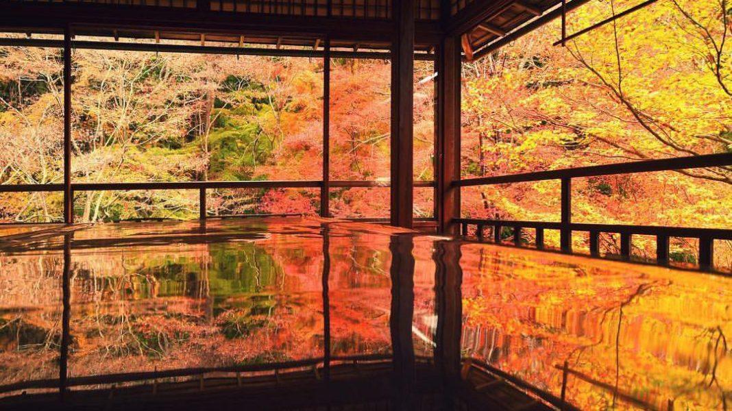 八瀨琉璃光院, 【京都景點】八瀨琉璃光院  (一年只開放兩次的無敵賞楓景點!)