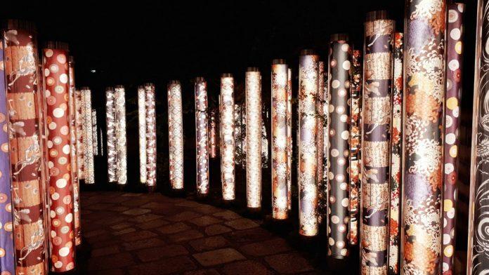 京都夜景 友禪的光林 Kimono Forest