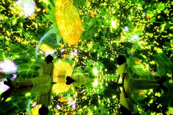 東京豐洲 teamLab Planets TOKYO 1