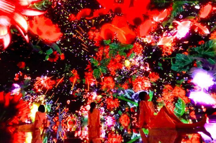 東京豐洲 teamLab Planets TOKYO 9