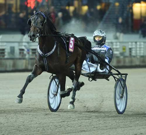 Den svenske 2-årsstjerne Garteh Boko kommer ud af en stærk dansk moderlinje.